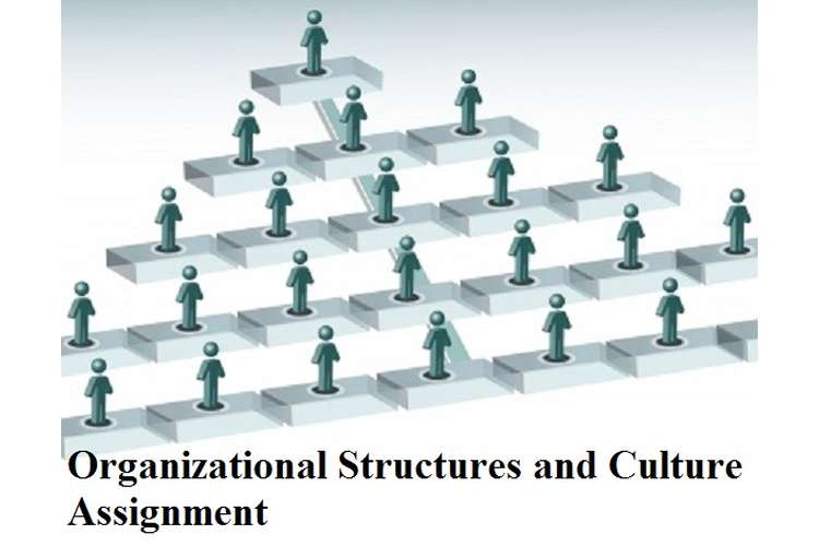 Organizational Structures Culture Assignment