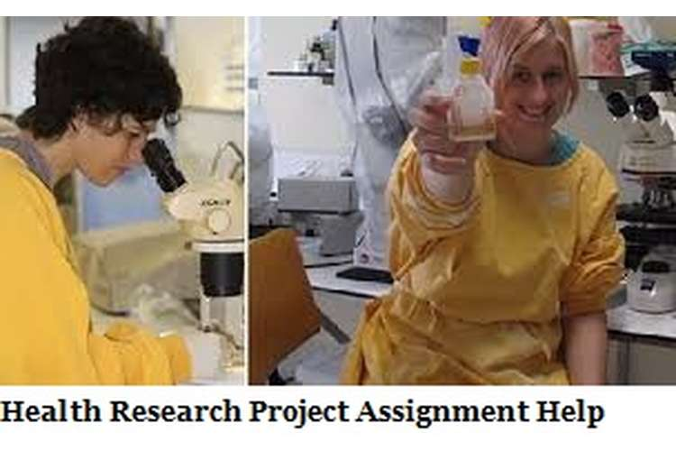 Health Research Project Assignment Help