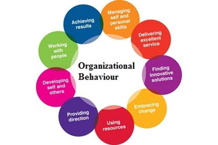 MGT202 Organizational Behaviour Assignment Solution