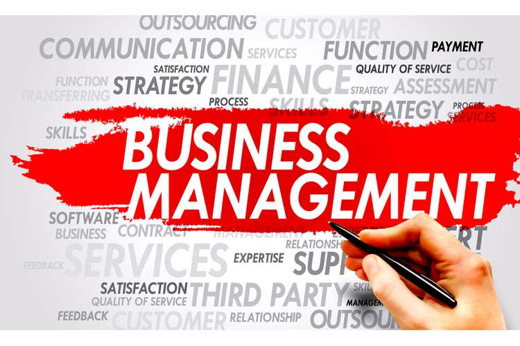 CIS5101 Management of Business Assignment Solution