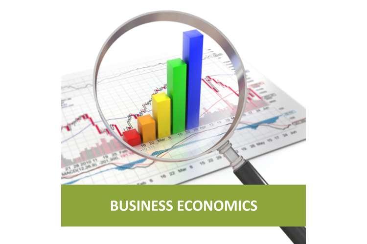 Unit 55 Business Economics Assignment
