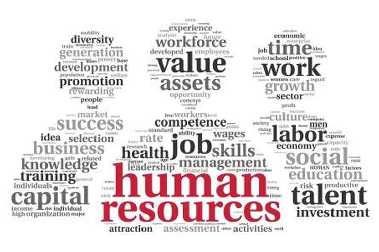 Human Resource Management Assignment Help