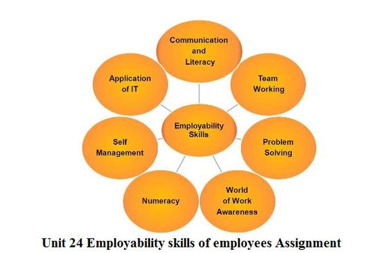 Unit 24 Employability skills of employees Assignment