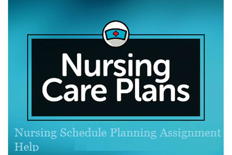 Nursing Schedule Planning Assignment Help