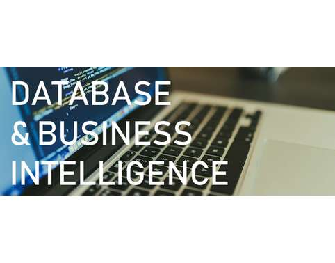 MAN6905 Databases And Business Intelligence Oz Assignments