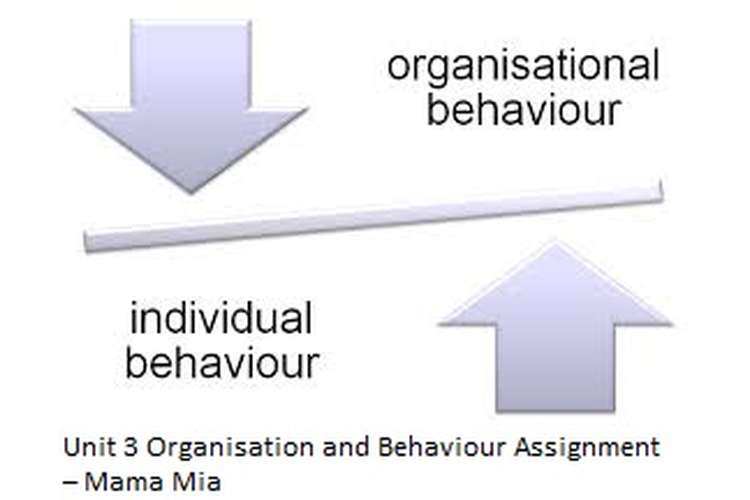 Unit 3 Organisation and Behaviour Assignment – Mama Mia