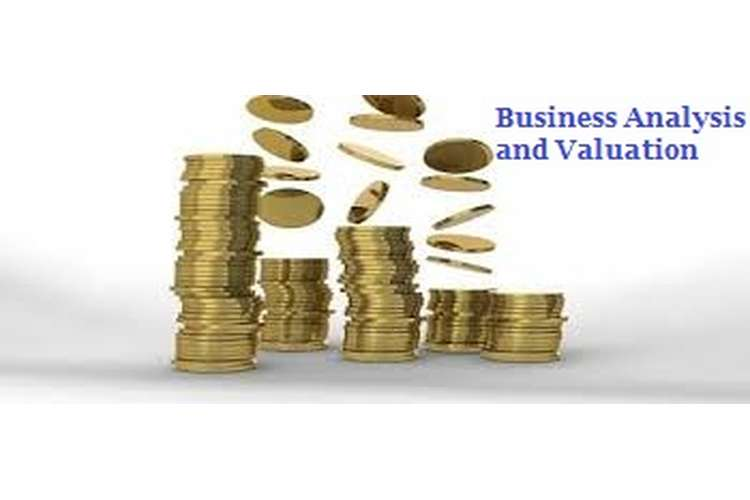Business Analysis and Valuation Assignment Help