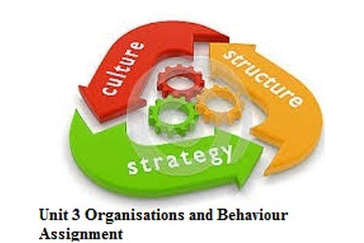 Unit 3 Organisations and Behaviour Assignment CAPCO and Albridge?