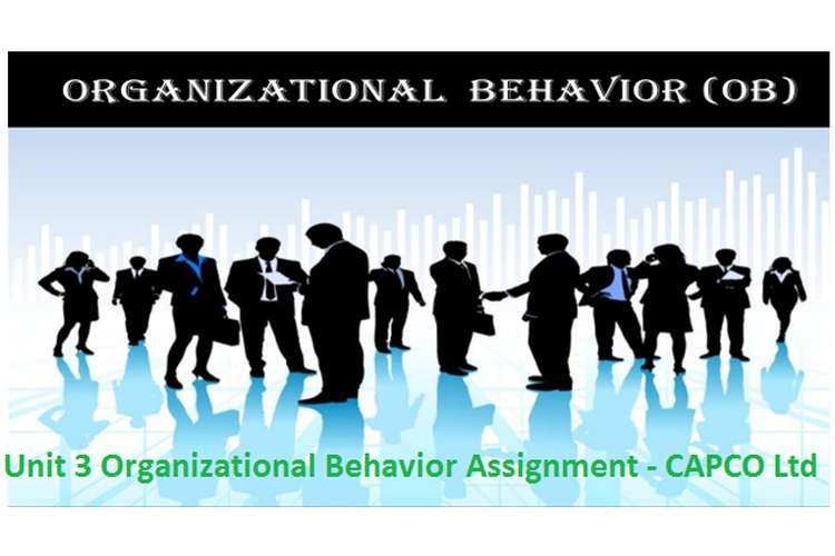 Unit 3 Organizational Behavior Assignment - CAPCO Ltd