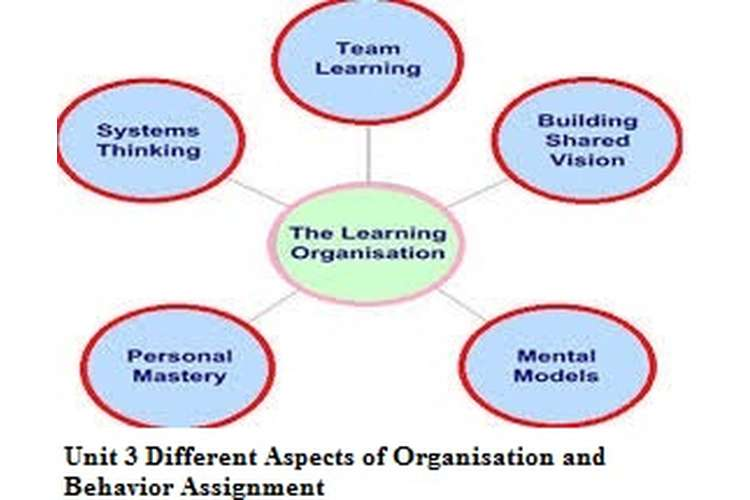 Unit 3 Different Aspects of Organisation and Behavior Assignment