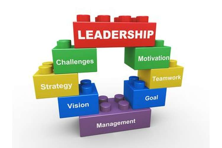 BUMGT5970 Leadership and Management Assignment Help