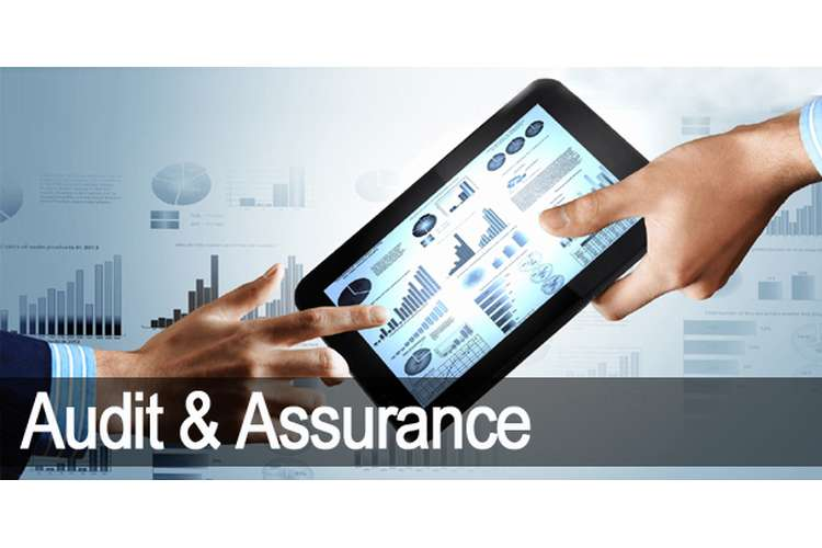 ACCG305 Auditing and Assurance Services Assignment
