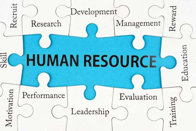 GSBS6040 Human Resource Management Assignments Solution