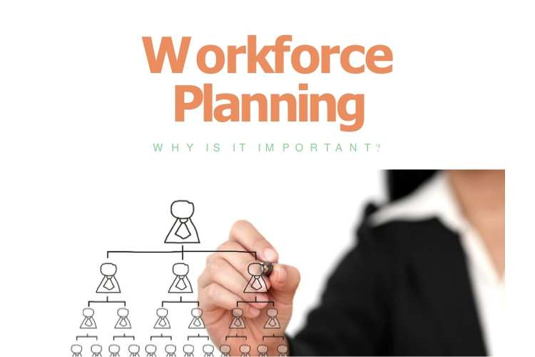 Workforce Planning Assignment Help