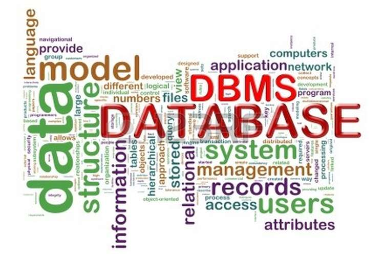 ITECH1006 Database Management System Assignment Solution