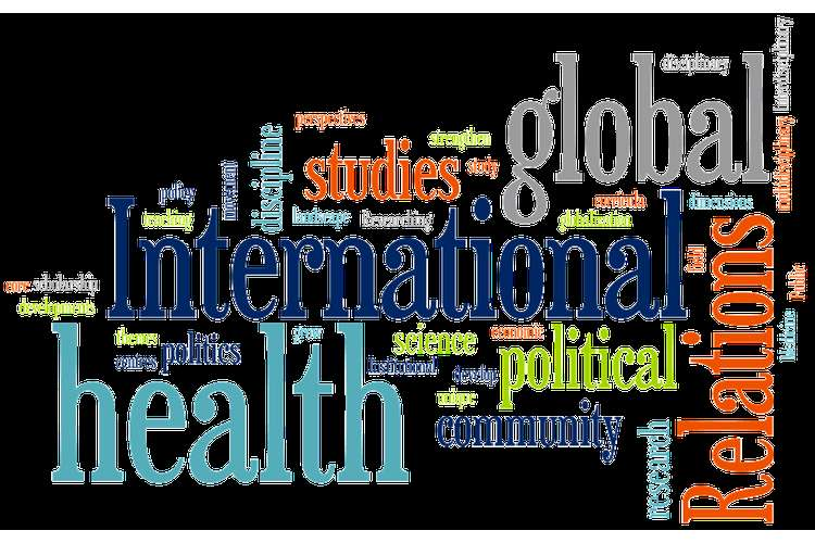 PUBH 5560U Introduction to International Health Assignment