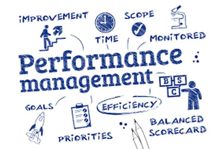 BSBMGT502 Manage People Performance Management Assignments