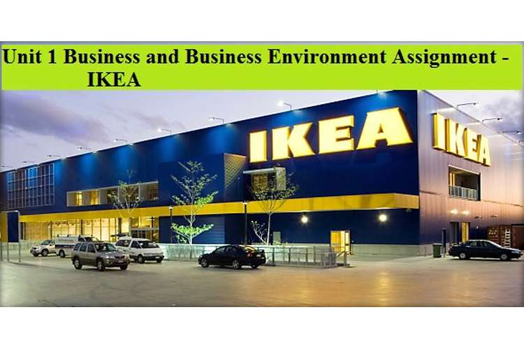 Business and Business Environment Assignment - IKEA