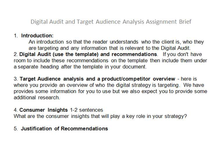 Digital Audit Target Audience Analysis Assignment Brief