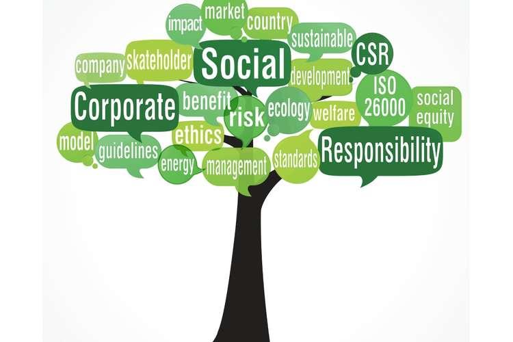 LEG500 Corporate Social Responsibility Oz Assignments