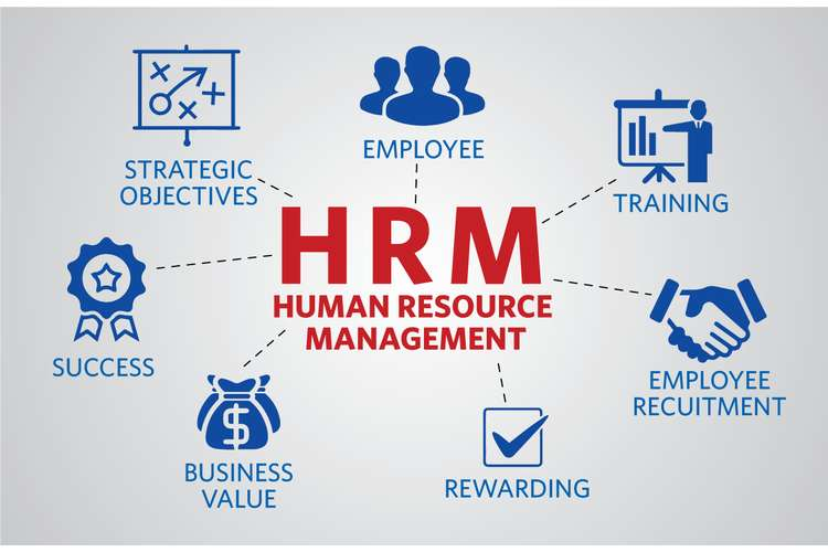 Human Resources Management Oz Assignments
