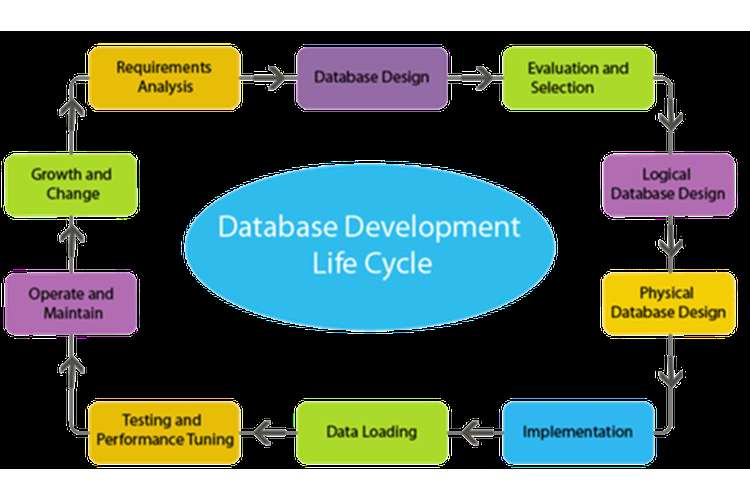 COIT20247 Database Design and Development Oz Assignments