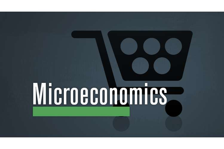 ECO101 Microeconomics Assignment Solution