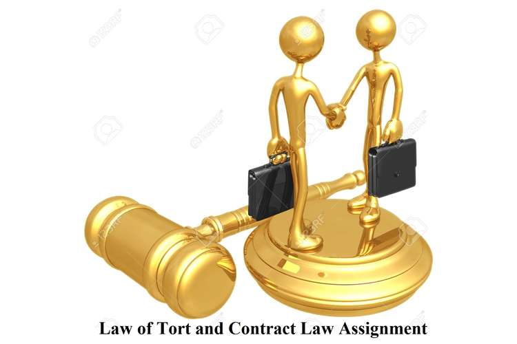 Law of Tort and Contract Law Assignment