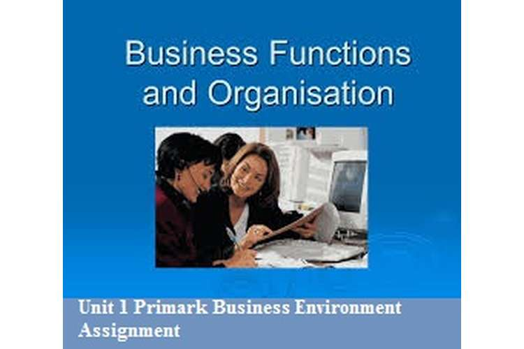 Unit 1 Primark Business Environment Assignment
