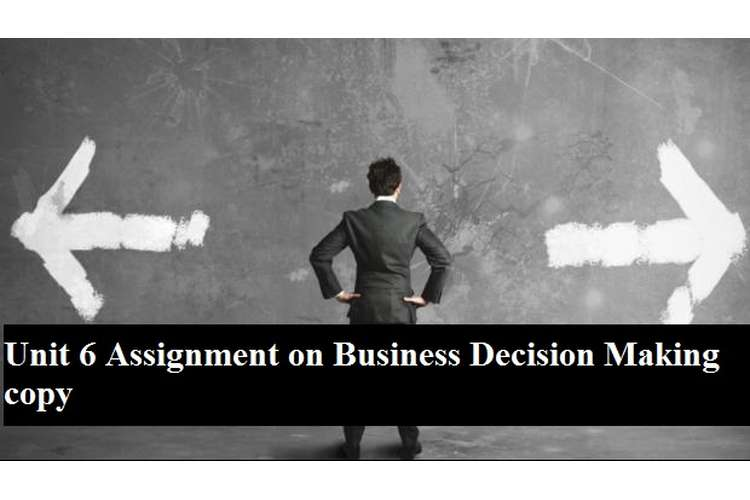Unit 6 Assignment Business Decision Making copy