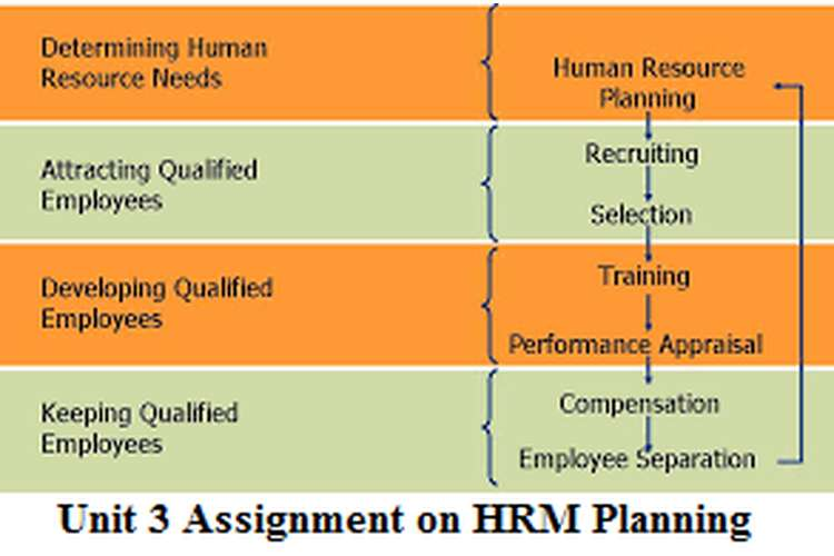 Unit 3 Assignment on HRM Planning