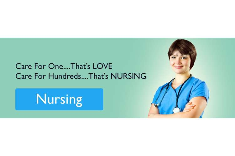 Work Based Nursing Experience Oz Assignment Help
