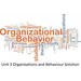 Unit 3 Organisations and Behaviour Solution