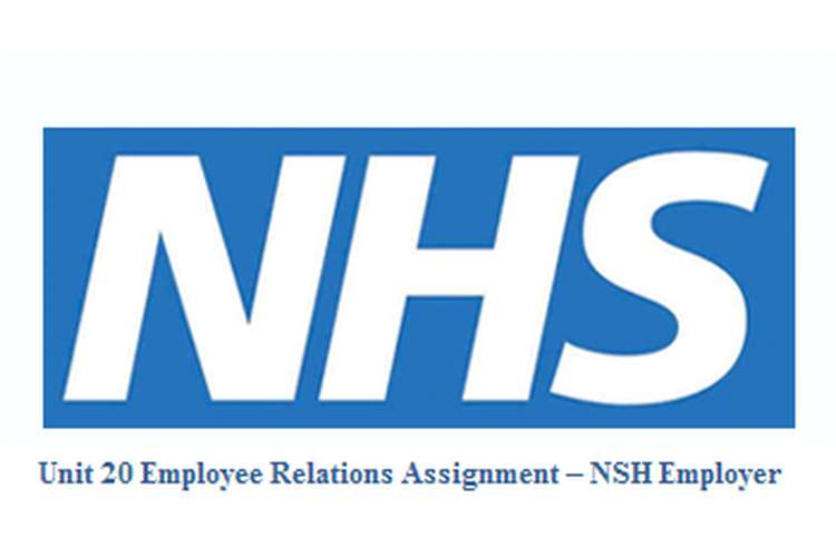 Unit 20 Employee Relations Assignment – NSH Employer