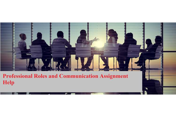 Professional Roles Communication Assignment Help
