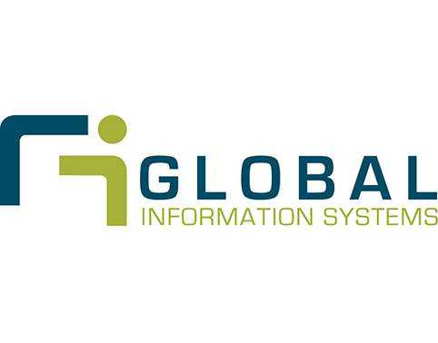 CIS8000 Global Information Systems Strategy Assignment Help