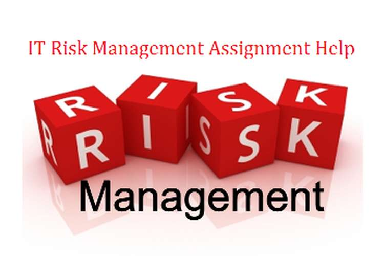 IT Risk Management Assignment Help