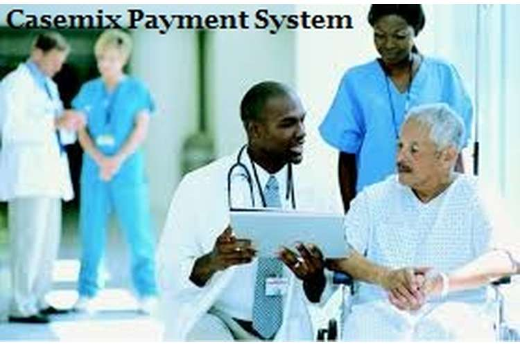 Casemix Payment System Assignment Solution