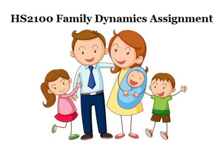 HS2100 Family Dynamics Assignment