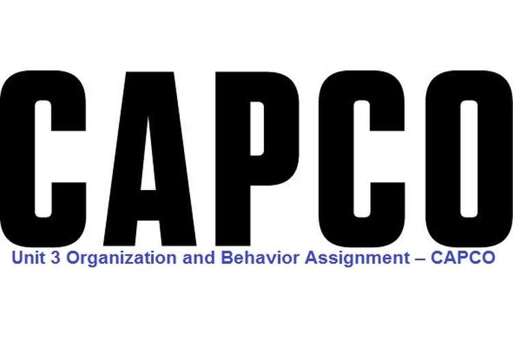 Unit 3 Organization and Behavior Assignment – CAPCO