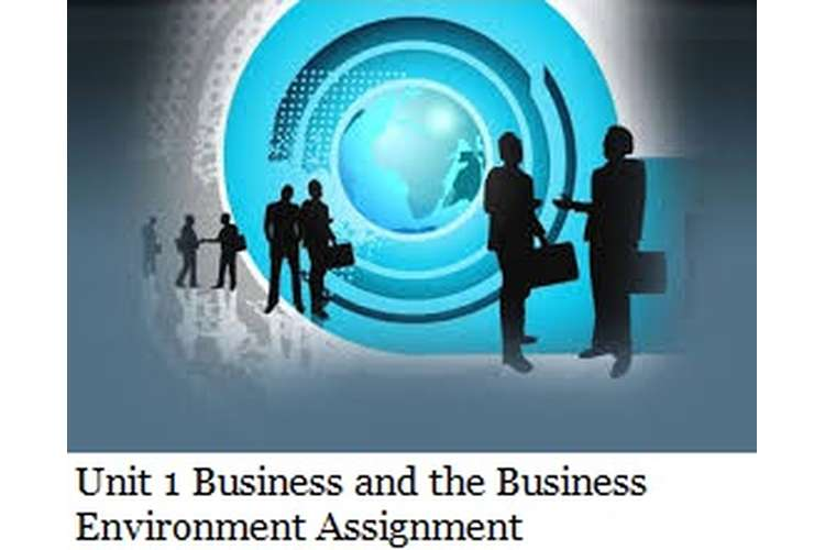 Unit 1 Business The Business Environment Assignment Copy 2