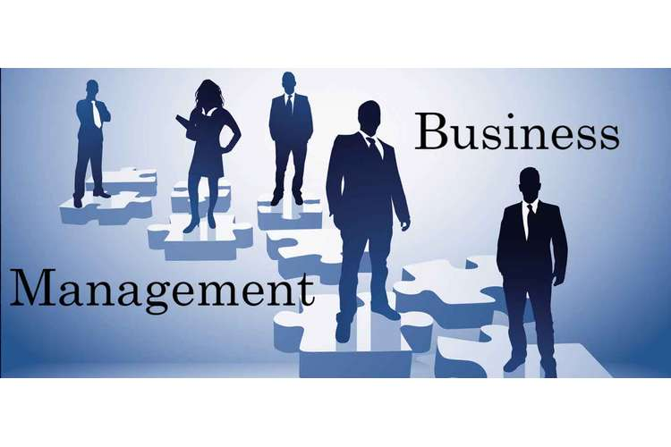 MIS352 Business Management Assignments Solution