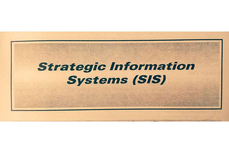 HI5019 Strategic Information Systems Oz Assignment