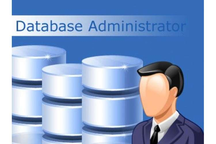 CIS5100 Database Management System Assignment Help