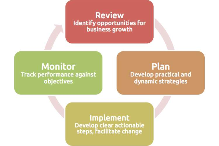 Implementation plan and monitoring strategies Assignment
