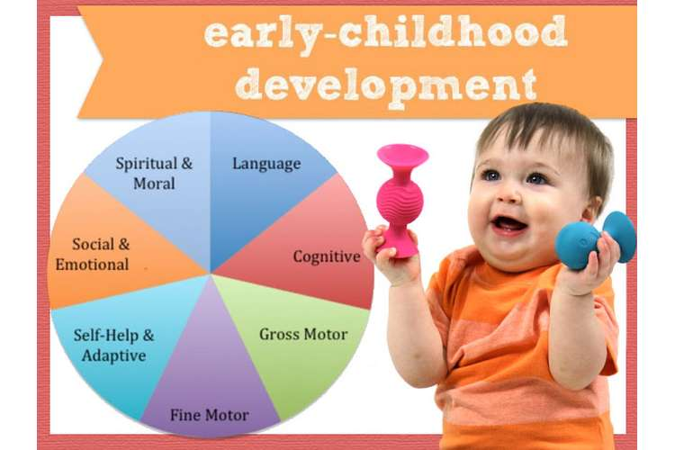 Early Childhood Studies Oz Assignment Solution