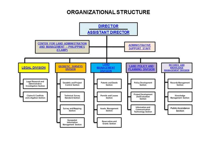Organizational Structure Assignment Solution