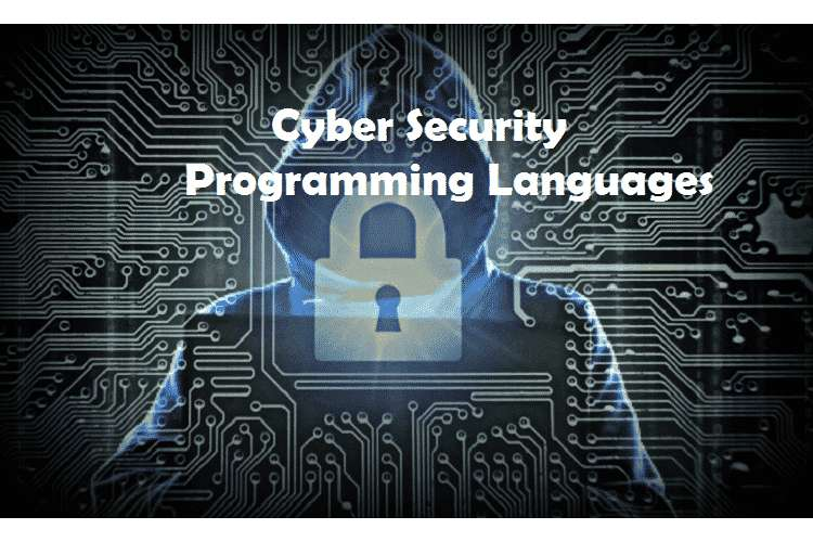 Cyber Security Programming Assignments Solution