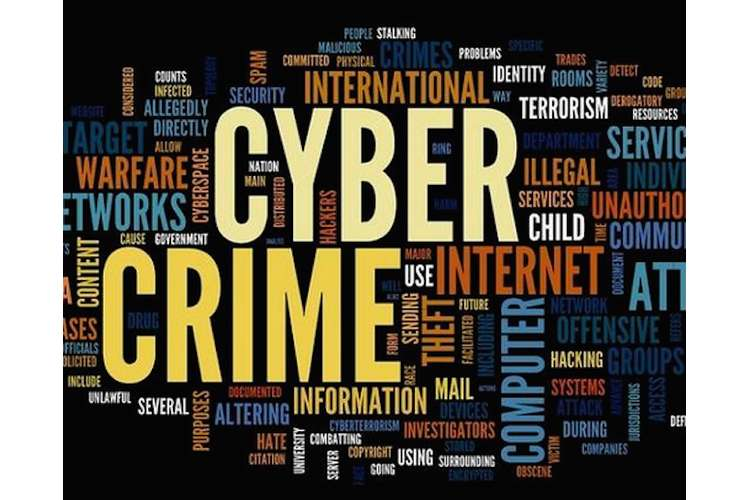 Cyber Crime Law Oz Assignment Solution