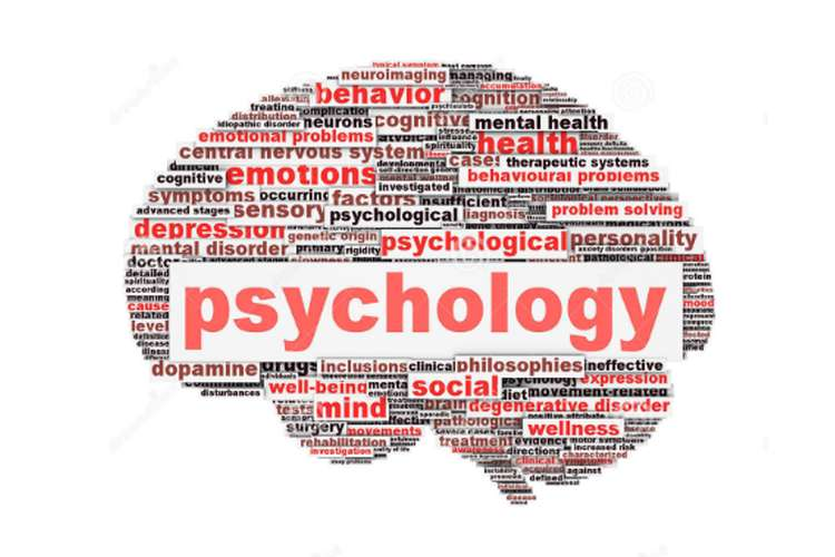 Unit 15 Psychology for Health and Social Care Assignment